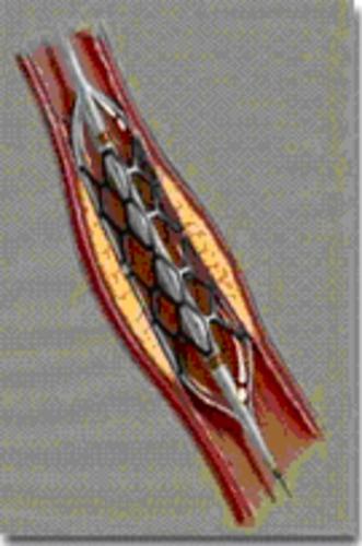 CHI054 C.tif